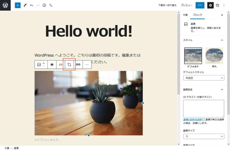 WordPress5.5 画像編集