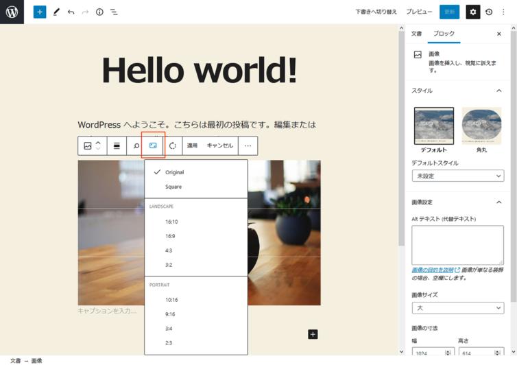 WordPress5.5 画像編集 アスペクト比